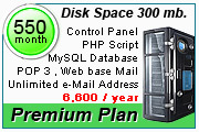 Hosting Plan 300 mb.